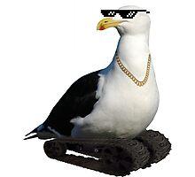 KingPin Seagull! Photographic Print