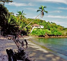 house on the beach in Martinique by Jerry Clitty