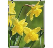 Daffodil Dreams iPad Case/Skin