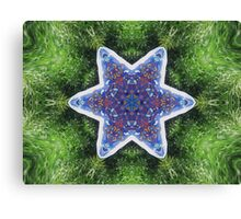 Star in the Grass Canvas Print