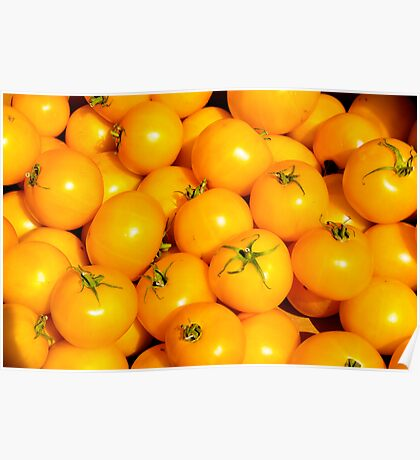 Yellow Tomatoes Poster
