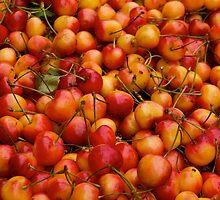 Rainier Cherries by Jeffrey  Sinnock