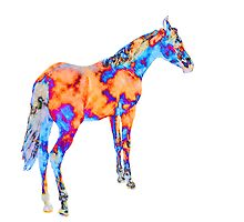 Horse of a Different Color by ChristyMcAuley