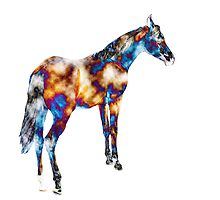 A Different Horse of a Different Color by ChristyMcAuley