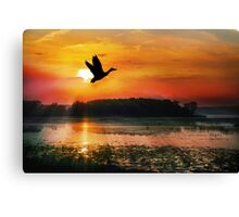 Sunset on the Mississippi Flyway Canvas Print