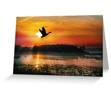 Sunset on the Mississippi Flyway Greeting Card