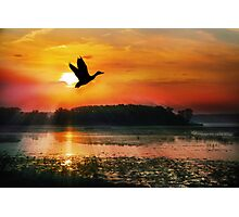 Sunset on the Mississippi Flyway Photographic Print