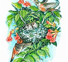 Humming Bird Family by clotheslineart