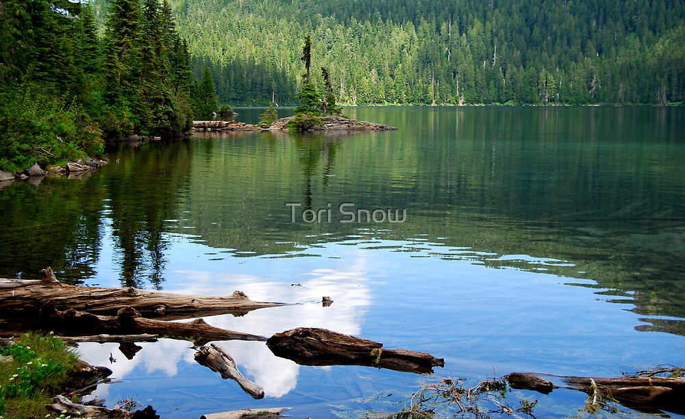 Mowich Lake Reflections by Tori Snow