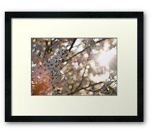 sunshine and flowers Framed Print