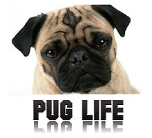 Pug Life by KKitchen