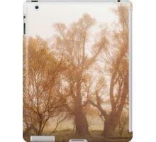 Fog and Willow iPad Case/Skin