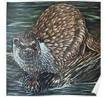 """""""European Otter"""" - Oil Painting Poster"""