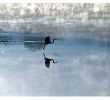 skimming the Susquehanna Photographic Print