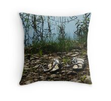 forgotten by the river Throw Pillow