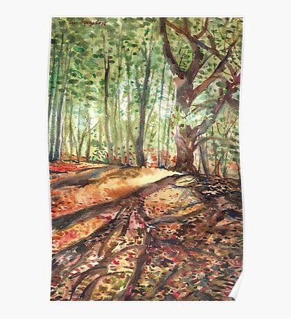 Poringlandwood,Norfolk  Paintingwork after Annette Hagger photo. Poster