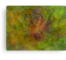 Butterfly Illusions Canvas Print