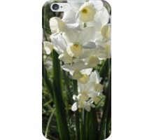 Scents of Jonquil iPhone Case/Skin