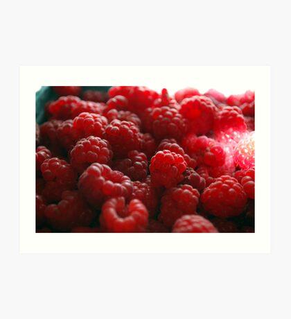 red raspberry  Art Print