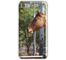 All have that one friend iPhone Case/Skin
