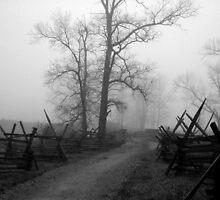 Misty Lane by OntheroadImage