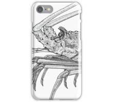 Rock Lobster iPhone Case/Skin
