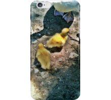 Ducklings iPhone Case/Skin