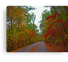 *FALL'S ARRIVAL* Canvas Print