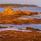 Off Mossy Point. by Bette Devine