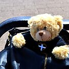 Look who,s been  hiding in my bag. by lynn carter