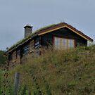 Norwegian Style Cottage by HELUA