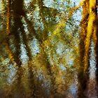 Springtime at the pond by Patrick Morand