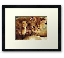 Don't Make Me Put My Foot Down Framed Print