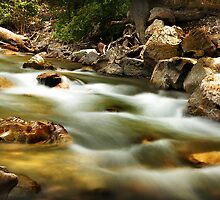 American Fork River - Late Summer by Ryan Houston