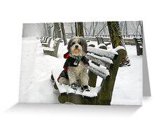 REALLY, REALLY... I LOVE SNOW! Greeting Card