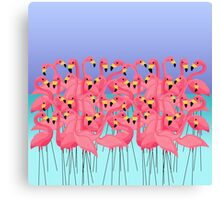Flamingo Group In The Caribbean Sea Canvas Print