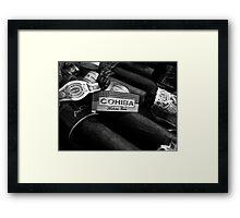 cuban cohiba  Framed Print