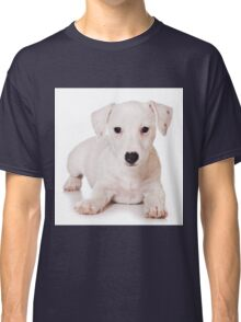 white Jack Russell Terrier puppy Classic T-Shirt