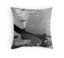 rays in black and white Throw Pillow