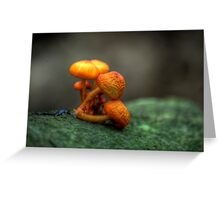 Lean on me on him (hdr) Greeting Card