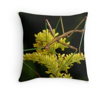 Phasmatodea (Walking Stick) Throw Pillow