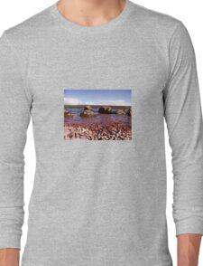 Low Down on Loch Ness Long Sleeve T-Shirt