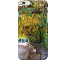 Under the Pergola at Rosalind Park, Bendigo iPhone Case/Skin