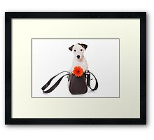 Jack Russell Terrier and a bag Framed Print
