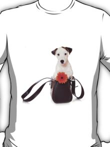 Jack Russell Terrier and a bag T-Shirt