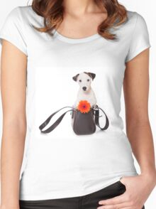 Jack Russell Terrier and a bag Women's Fitted Scoop T-Shirt