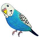Parakeet Drawing by parakeetart