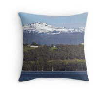 Hartz Mountains Panorama Throw Pillow
