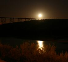 Moon Over the Bridge by Alyce Taylor