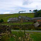 Dales Farm by Trevor Kersley